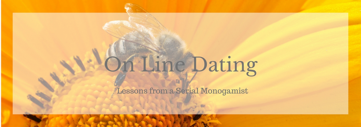 On Line Dating Lessons