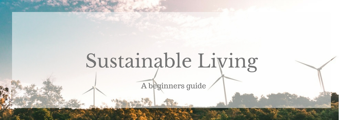 A Beginners Guide to Sustainable Living
