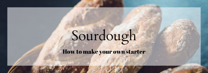 Making Your Own Sourdough Starter