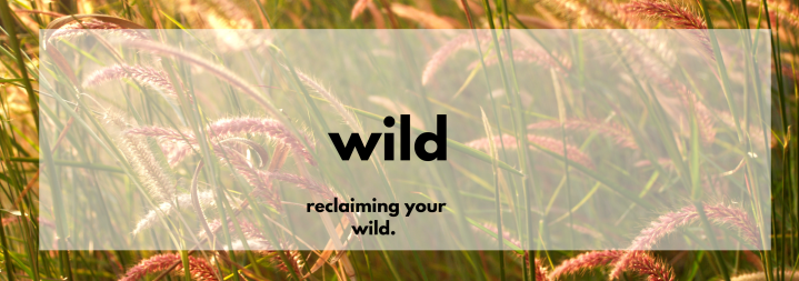 Reconnect With Your Wild
