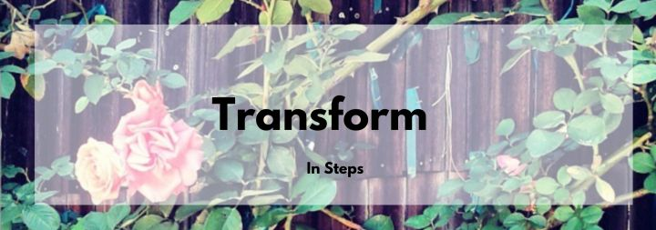 How to Transform