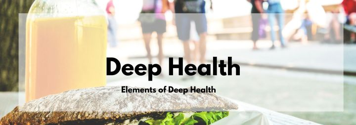 Elements of Deep Health