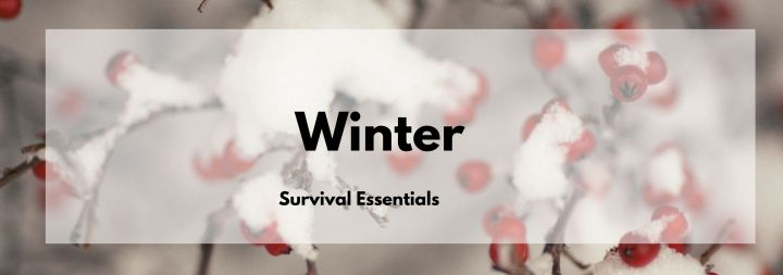Winter survival essentials